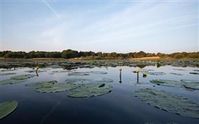 étang Neuf -domaine du Plessis Fédéraion départementale des chasseures de l'Indre