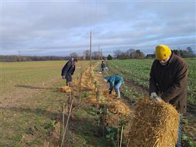 Chantier-participatif-Plantation