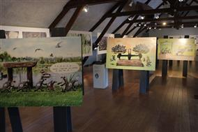 Exposition-Cistude-brenne